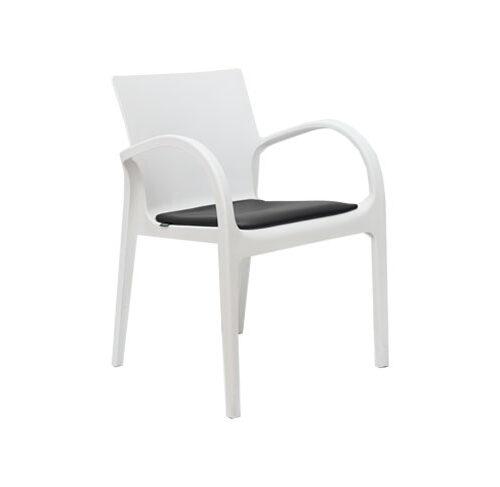 صندلی  دسته دار دژاوو با تشک
